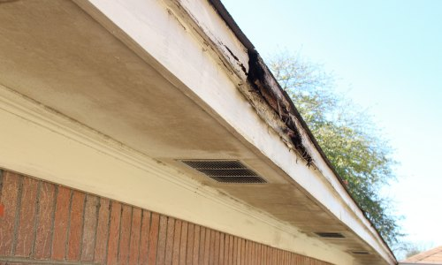 What To Look For In A Roof Inspection